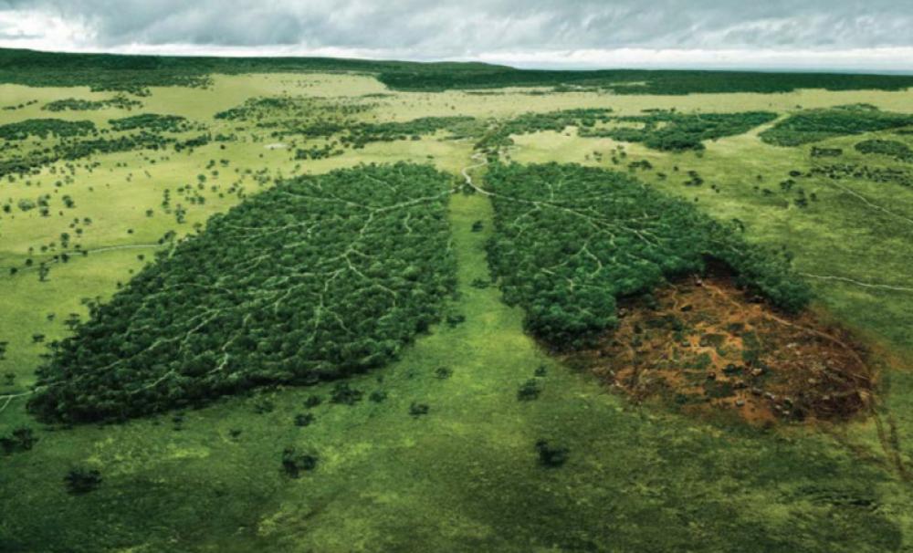 Special presentation in climate change: Appetite for Destruction