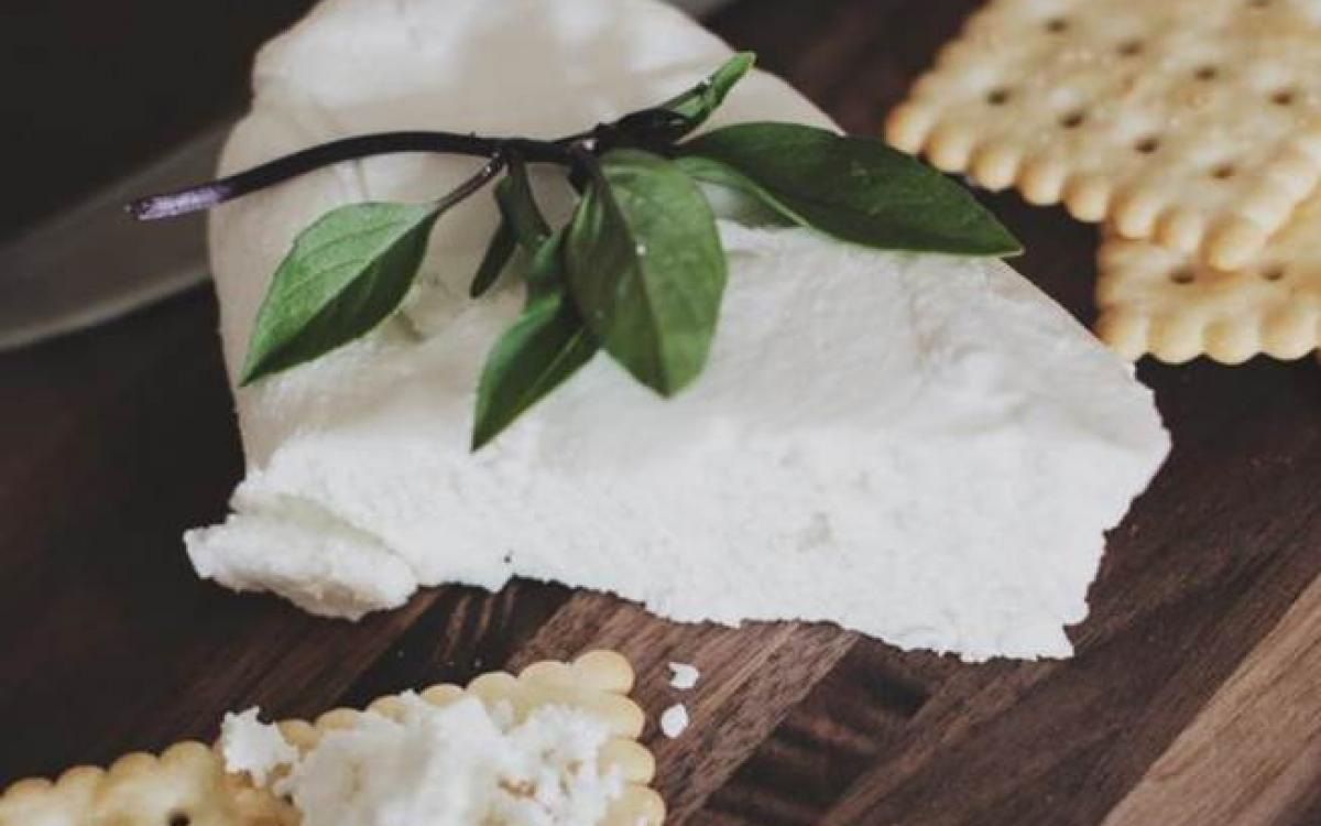 Making Cheese and Yoghurt at Home